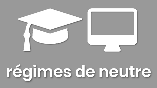 formation de 3 heures en ligne pour être à l'aise avec les régimes de neutre - innotelos | vitamines pour l'innovation