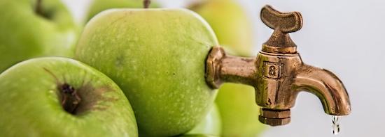 conseil et accompagnement sur-mesure - innotelos | vitamines pour l'innovation (Grenoble / Isère et Lyon - Rhône - Auvergne Rhône Alpes AURA - France)