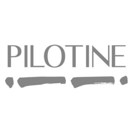 Pilotine - consultants experts dans la gestion des risques, du financement et de la trésorerie (Paris)